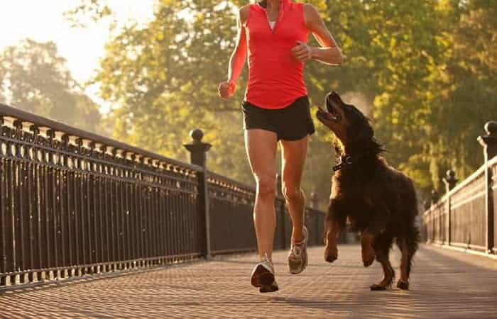 girl jogging with her dogs